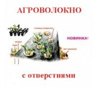 агроволокно для клубники с отверстиями 60 черн (1,6х200)